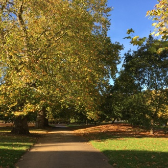 Hyde Park in the October sun.